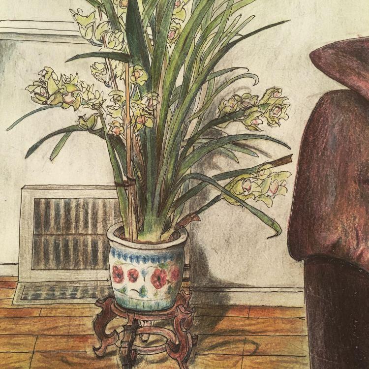PlantinLivingRoom